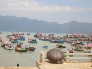 Члены ОРО ВПА МПА во Вьетнаме 5