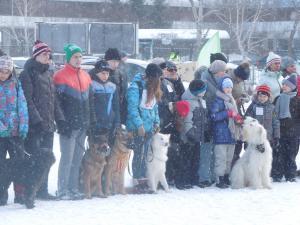 Кубок России в гонках на собачьих упряжках 12
