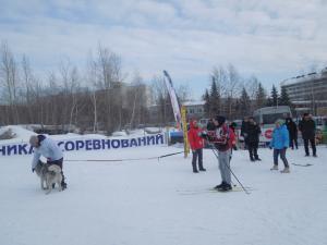 Кубок России в гонках на собачьих упряжках 19