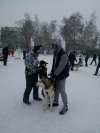 Кубок России в гонках на собачьих упряжках 21