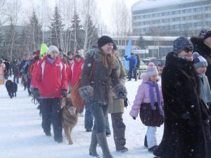 Кубок России в гонках на собачьих упряжках 9