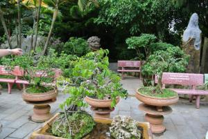 Вьетнам - одно из любимейших мест отдыха европейцев, глазами наших друзей 4