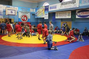 VIII межрегиональный турнир по самбо памяти Александра и Никиты Петровых 0