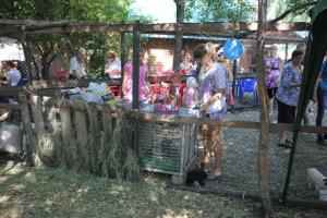 XI Сибирская агротехническая выставка-ярмарка АгроОмск 2013 29
