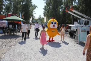 XI Сибирская агротехническая выставка-ярмарка АгроОмск 2013 45