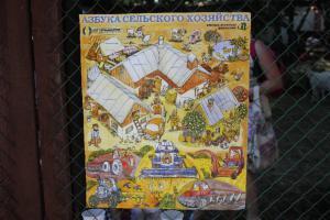 XI Сибирская агротехническая выставка-ярмарка АгроОмск 2013 47